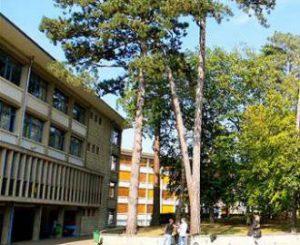Établissements et structures _Lycée Louis Bascan