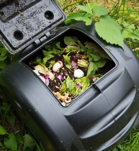 Eco composteur