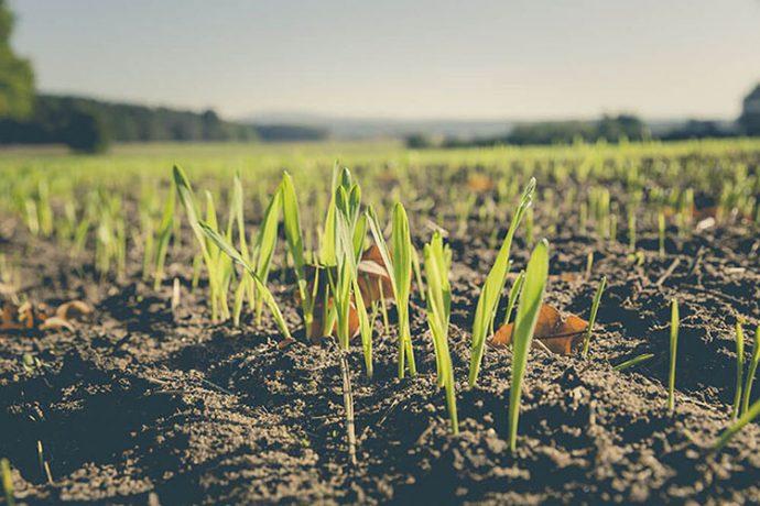 Épandage agricole et charte de « bon voisinage »