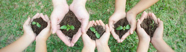 Plante, jardinage PNR Chevreuse